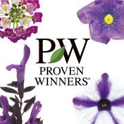 「PWの花を育てる!『ブルーサマー系5品種セット』 ガーデニングモニター!」の画像、株式会社ハクサンのモニター・サンプル企画