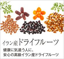 【ベジタブルガーデン】イラン産ドライフルーツ