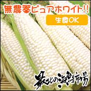 畑のフルーツ!純白のとうもろこし『有機栽培ピュアホワイト』