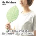 葉っぱのカタチをしたうちわ。葉うちわ【10名】モニタ募集/モニター・サンプル企画