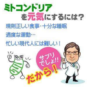 【ミトコンドリア】ミトコンサプリP3【元気ですか?】