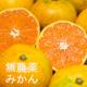 イベント「【3名様限定】有機JAS無農薬『温州みかん3kg』モニタープレゼント」の画像