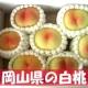 イベント「【3名様限定】岡山県の白桃モニタープレゼント出荷!」の画像