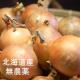 イベント「【3名様限定】北海道産『無農薬 玉ねぎ』モニタープレゼント」の画像