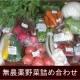 イベント「【3名様限定】青森県無農薬野菜詰め合わせ『アグリパック』プレゼント」の画像