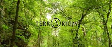 テラリウム表参道