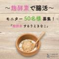 【腸活_現品】【40代・50代オトナ女子】麹酵素するりときなこ50名モニター/モニター・サンプル企画