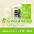 GreenSnapご利用体験談大募集!!花とみどりのギフト券プレゼント/モニター・サンプル企画