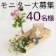 イベント「【40名】かわいいお花で春の訪れを!お花の定期購入サービスのモニター大募集♪」の画像