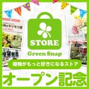 「GreenSnapSTORE公開記念! あなたの欲しい商品はどれですか?」の画像、GreenSnapのモニター・サンプル企画