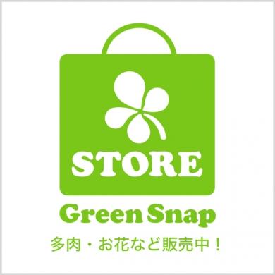 GreenSnapSTORE