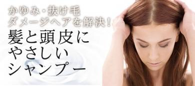 アミノ酸シャンプー特集★健康な頭皮維持、育毛や美髪作りのために♪