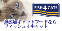 フィシュ4キャット 公式サイト