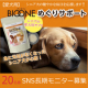 イベント「【愛犬用】バイオワンめぐりサポートのブログorインスタ投稿モニター20名様募集!」の画像