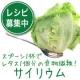 イベント「【レシピ募集】話題の食物繊維「天然サイリウム 100%純粉末」を30名様に♪」の画像