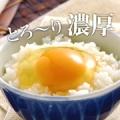 【大江ノ郷】春に食べたい卵レシピ教えてくれる方へ朝採れ『天美卵』を5名様♪/モニター・サンプル企画