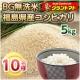 【グラントマト】BG無洗米26年福島産コシヒカリ5kg 試食モニター