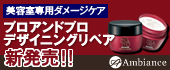 美容室専用 「プロアンドプロ デザイニングリペア」新発売!