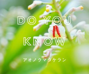 東京農工大学 共同研究 植物美容成分「アオノクマタケラン」