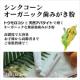 【無添加ハミガキ】シンクコーンオーガニック歯みがき粉180g  現品15名様/モニター・サンプル企画