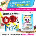 【3か月継続 男性モニター写真募集】血圧GABA粒(3,700円相当)の無料モニター5名募集