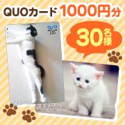 【30名様に!】写真から作成するオリジナルクオカード1000円券!!