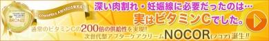 """肉割れを消したい!!肉割れ専門アフターケアクリーム""""ノコア""""発売!!"""