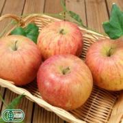 「青森県の有機JAS栽培りんご『ふじ』ご試食モニター募集!【6名様】」の画像、ふるさと21株式会社のモニター・サンプル企画