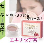 風邪・花粉の季節の下準備!★エキナセア(エキネシア)茶モニター募集