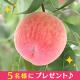 新鮮果実【果汁たっぷり もも】