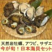 【越後村上うおやの逸品】新潟県笹川流れの天然の岩牡蠣