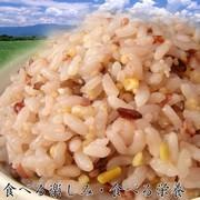 楽天2009年上半期雑穀ランキング第一位★国内産21雑穀米