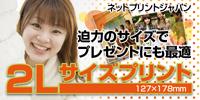 ネットプリントジャパン 2Lサイズプリント