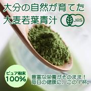ピュア粉末100%  無農薬 有機青汁「大麦若葉」