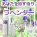 【アロマスター】あなたを癒す香りアロマスプレー【ラベンダー】を50名様に