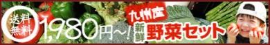 ほっと、えむ。九州の新鮮野菜8品セット