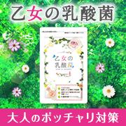 大人のポッチャリ対策【乙女の乳酸菌】