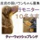 イベント「先行モニター■愛犬の立場に立って開発したスキンケア商品<ハーブティーウォッシュ>」の画像