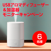 USBアロマディフューザー&加湿器
