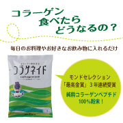 純粋コラーゲンペプチド100%粉末★コラゲネイド