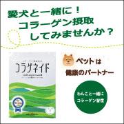 純粋コラーゲン100%粉末☆コラゲネイド