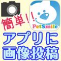 ペット専用SNSアプリに写真を投稿するだけ!クオカード10名様にプレゼント♪