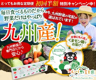 九州・熊本産のお野菜セット10品目