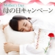 母の日キャンペーン拡散イベント!!/モニター・サンプル企画