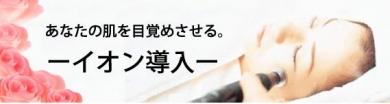 ビューテリジェンス BT-イオンBOX 【イオン導入美顔器セット】