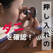「あなたの家の押入れにダニ!?ダニ目視キットでダニの生態調査モニター」の画像、有限会社ティシビィジャパンのモニター・サンプル企画