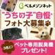 イベント「[ベルメゾン]かわいい☆ペットフォト大募集!」の画像