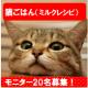 イベント「猫レシピ【免疫ミルク】の本商品モニター募集!」の画像