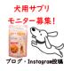 イベント「【愛犬の運動不足や筋力UPに!】「筋トレわんわん」投稿イベント・第7弾!」の画像