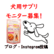 イベント「【愛犬の運動不足に!】「筋トレわんわん」投稿イベント・第6弾!」の画像